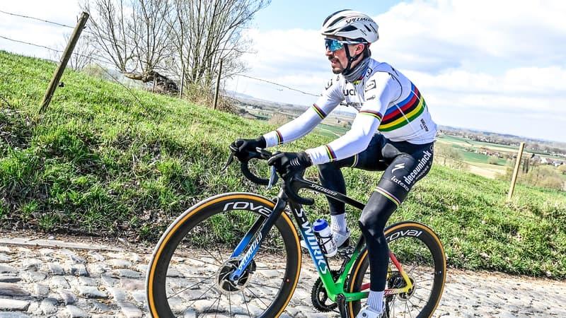 Cyclisme: Alaphilippe aurait déjà dû gagner le Tour de France selon son directeur sportif