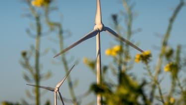 Ikea a racheté trois parcs éoliens situés dans l'Indre et l'Oise. (image d'illustration)