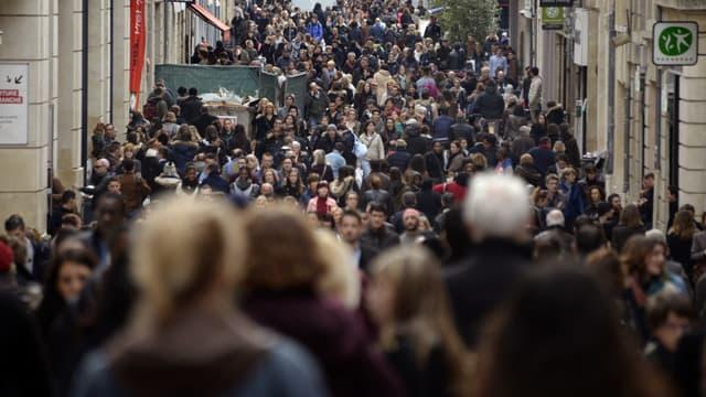 La foule dans les rues de Bordeaux, le 8 janvier 2014 (illustration)