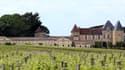 Le célèbre Château d'Yquem est concerné par le tracé de la ligne Bordeaux-Dax