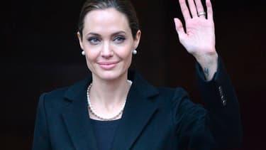 Angelina Jolie a révélé mardi avoir subi une double mammectomie à titre préventif après la découverte qu'elle était porteuse d'une mutation génétique accroissant les risques de développer un cancer du sein ou des ovaires. L'actrice dit avoir voulu rendre