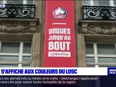 J-2 avant Losc-Saint-Étienne: Lille s'affiche aux couleurs des Dogues