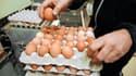 Le prix de l'alimentation des volailles a augmenté de 17%, ce qui équivaut à une hausse de 10% du prix de revient des œufs