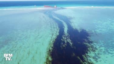 Les images de l'étendue de la fuite d'hydrocarbures d'un vraquier à l'île Maurice