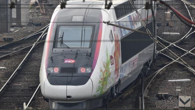 Seul un TGV sur trois circulera ce jeudi.