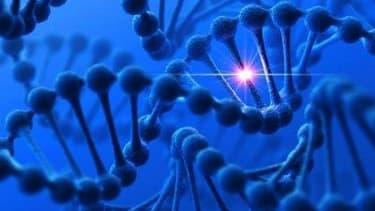 Les stigmates de violences subies pendant l'enfance se grefferaient à l'ADN.