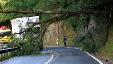 Les vents violents ont fait trois morts en France mercredi 16 septembre