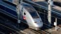 Des associations d'usagers s'élèvent contre l'augmentation du prix moyen des tarifs TGV, Teoz et Lunea, de 2,85% à partir du 8 février, annoncée par la SNCF. /Photo d'archives/REUTERS/Vincent Kessler