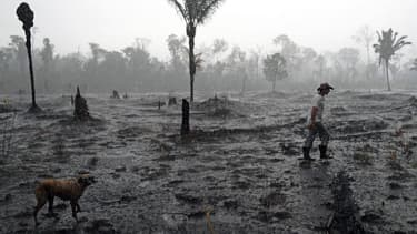Paysage dévasté en Amazonie, le 26 août 2019