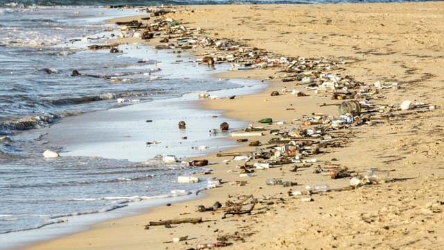 Plage jonchée de déchets. (illustration)