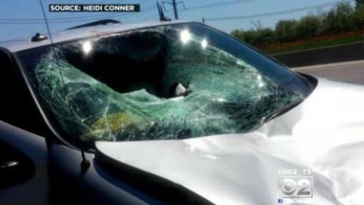 L'impact du cerf sur la voiture d'Heidi Conner