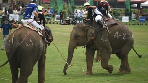 Des joueurs de polo à dos d'éléphants à Bangkok, le 10 mars 2016