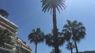 Cannes ensoleillée pour le Festival.