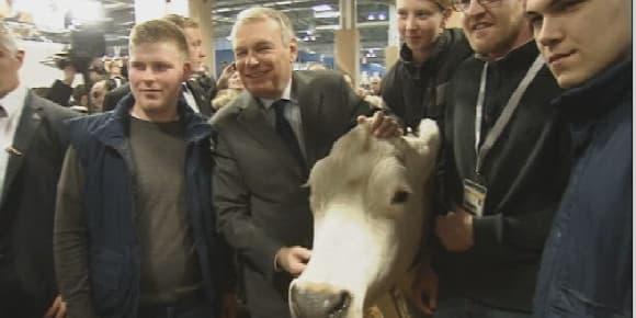 """Jean-Marc Ayrault prend la pose aux côtés d'une vache qui """"bave""""."""