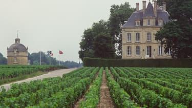 En 2015, la famille Pinault, actionnaire majoritaire, a donné son feu vert pour lancer la certification en bio sur l'ensemble du domaine,