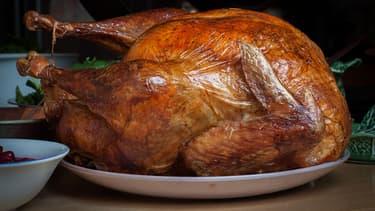 La dinde de Thanksgiving.