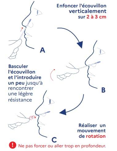 Le schéma du prélèvement nasal avec un autotest