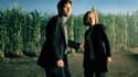 La série X-Files revient pour une dixième saison.