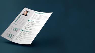 Le CV, en plus d'apporter les informations sur le profil du candidat et ses attentes, doit être attractif afin d'attirer l'attention du recruteur.