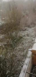 Il neige à Quiévrechain dans le Nord - Témoins BFMTV