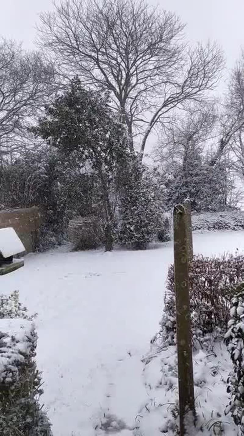 Neige à Bégard (Côtes-d'Armor) - Témoins BFMTV
