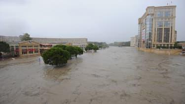 L'Etat de catastrophe naturelle a été déclaré pour une soixantaine de communes de l'Hérault.