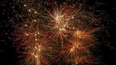 Il n'y aura pas de feu d'artifice du 14 juillet à Versailles cette année (illustration).