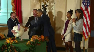 Comme le veut la tradition à la veille de la fête de Thanksgiving, Barack Obama a gracié une dinde à la Maison blanche.