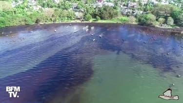 Île Maurice: de nouvelles images filmées par drone montrent l'étendue de la marée noire sur les côtes