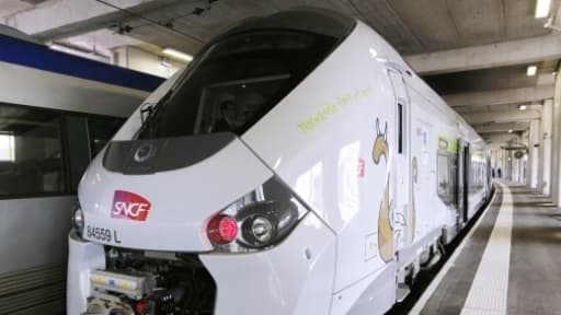 1.300 quais de gares sur les 8.700 que compte le réseau français sont inadaptées aux nouveaux TER.