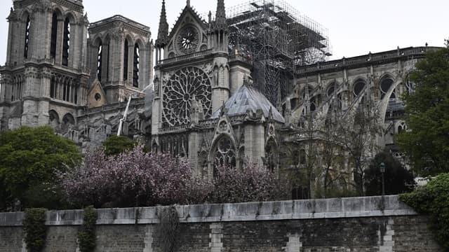 67 personnes travaillent sur le site de Notre -Dame