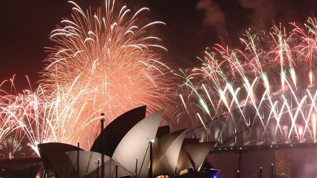 Ce voyage permet de profiter du feu d'artifice tiré chaque année dans le port de Sydney.
