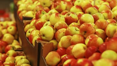 Des pommes (photo d'illustration).