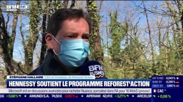 Impact : Hennessy soutient le programme Reforest'Action par Cyrielle Hariel - 12/04