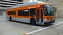Les autobus de Los Angeles, fonctionnant au gaz naturel, vont être progressivement remplacés par des modèles électriques. (image d'illustration)