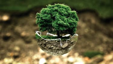 Les cadres pensent que croissance et développement durable vont bien de pair