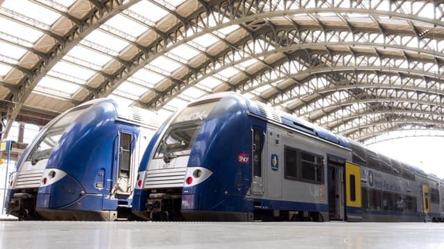 Des trains à quai à la gare du Nord à Paris (illustration)