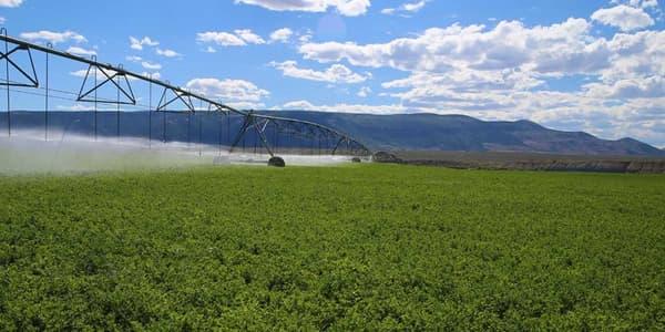 Les infrastructures agricoles sont comprises dans le prix de vente.