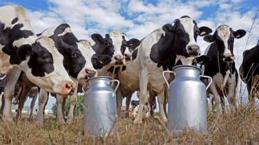 La grande distribution fait profil bas face aux agriculteurs.