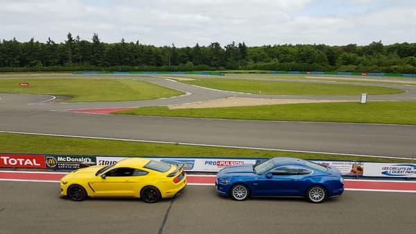 La Shelby GT350R (à gauche), c'est la version musclée de la Mustang GT (à droite)