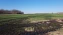 Plusieurs hectares de champs touchés par une fuite d'hydrocarbures.