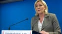 Marine Le Pen le 29 mars 2015 après le second tour des élections départementales.