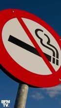 Pour le mois sans tabac, Adeline François se met au défi d'arrêter de fumer