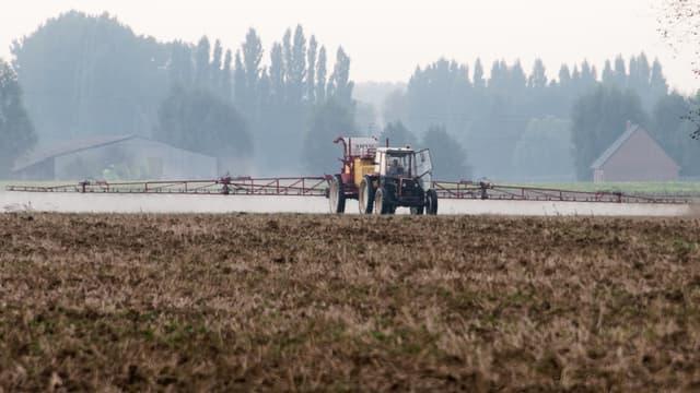 L'État a lancé en octobre dernier un vaste plan de soutien aux agriculteurs.