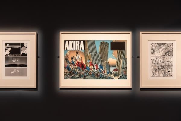 Akira d'Otomo