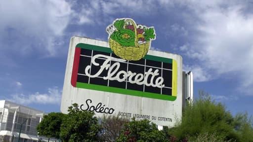 Le groupe Florette demande aux consommateurs de ne pas consommer les sachets de persil achetés entre le 4et le 11 juillet (Photo d'illustration).