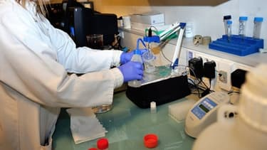 Manipulation en laboratoire (Photo d'illustration)