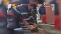 Ce pompier a sauvé le quadrupède en lui apportant également un massage cardiaque