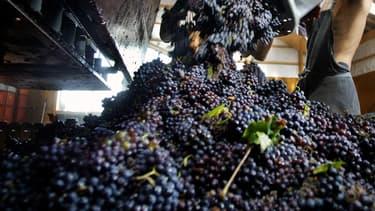Le syndicat des vins Nature'l a établi sa charte avec les services du ministère de l'Agriculture, de l'Institut National de l'Origine et de la Qualité (INAO) et de la Répression des Fraudes.