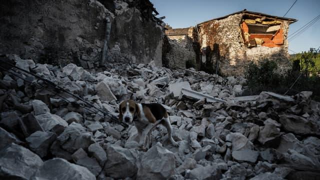 Un séisme de magnitude 5,4 sur l'échelle de Richter, qui n'a duré que quelques secondes le 11 novembre à la mi-journée, a provoqué de nombreux dégâts en particulier au Teil.